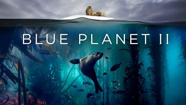 gratis Dokuserie: Der blaue Planet 2