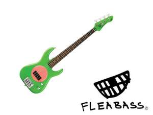 FleaBass Junior Punkbass grün-pink