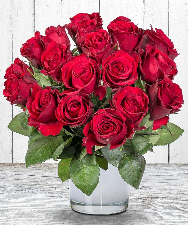 18 rote Rosen für 12,18€ inkl. Versand (67ct. Rose) - Mit Payback-Plus nur 7,19€!