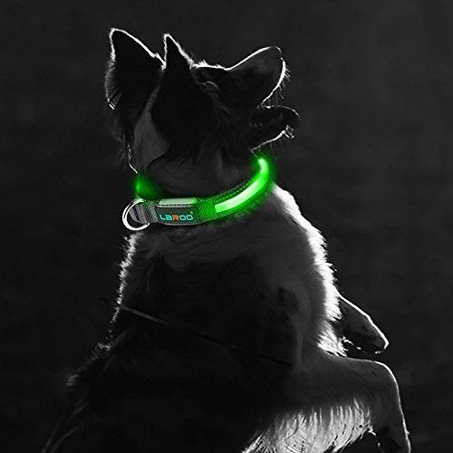 Hundehalsband leuchtend Laroo
