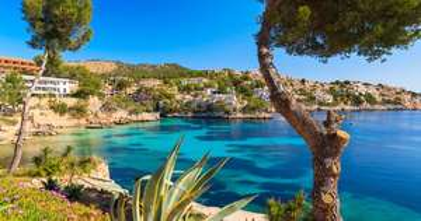 13 Tage Mallorca inkl Zug zum Flug April/ Mai für 237€ p.P ab Frankfurt oder Köln/Bonn