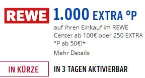 [Payback/Rewe Center] 1000 Extrapunkte ab 100€