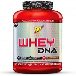 [bodyandfit] BSN DNA Whey Protein 1,87kg (13,32€/kg)