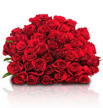 [Blumeideal] 44 Rote Rosen mit 50cm Stiellänge für 24,98