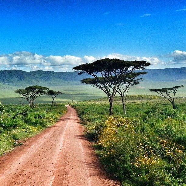 Flüge: Kenia [April - Juni / September - Dezember] - Hin- und Rückflug von Basel nach Nairobi ab nur 324€ inkl. Gepäck
