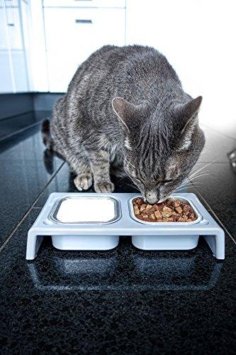 Katzenfreunde: Katzennapf auf Amazon