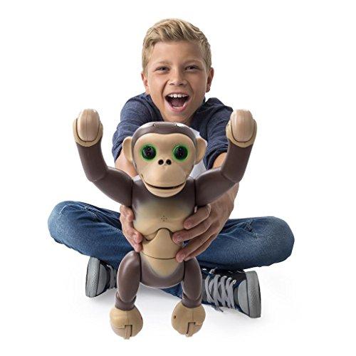 ( Amazon Prime ) Zoomer Chimp – 6034097 – Interaktives Spielzeug, Tier-Figur – Schimpanse