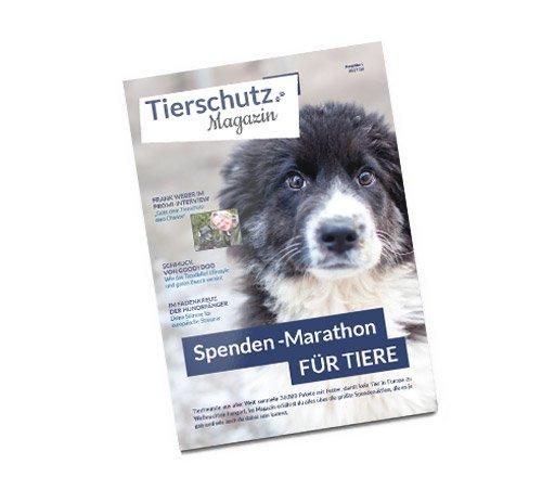 Das neue Tierschutz-Magazin ist da ! Jetzt GRATIS anfordern !
