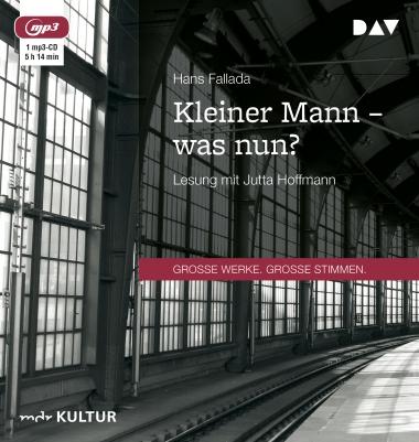 gratis Hörbuch - Hans Fallada: Kleiner Mann - was nun?