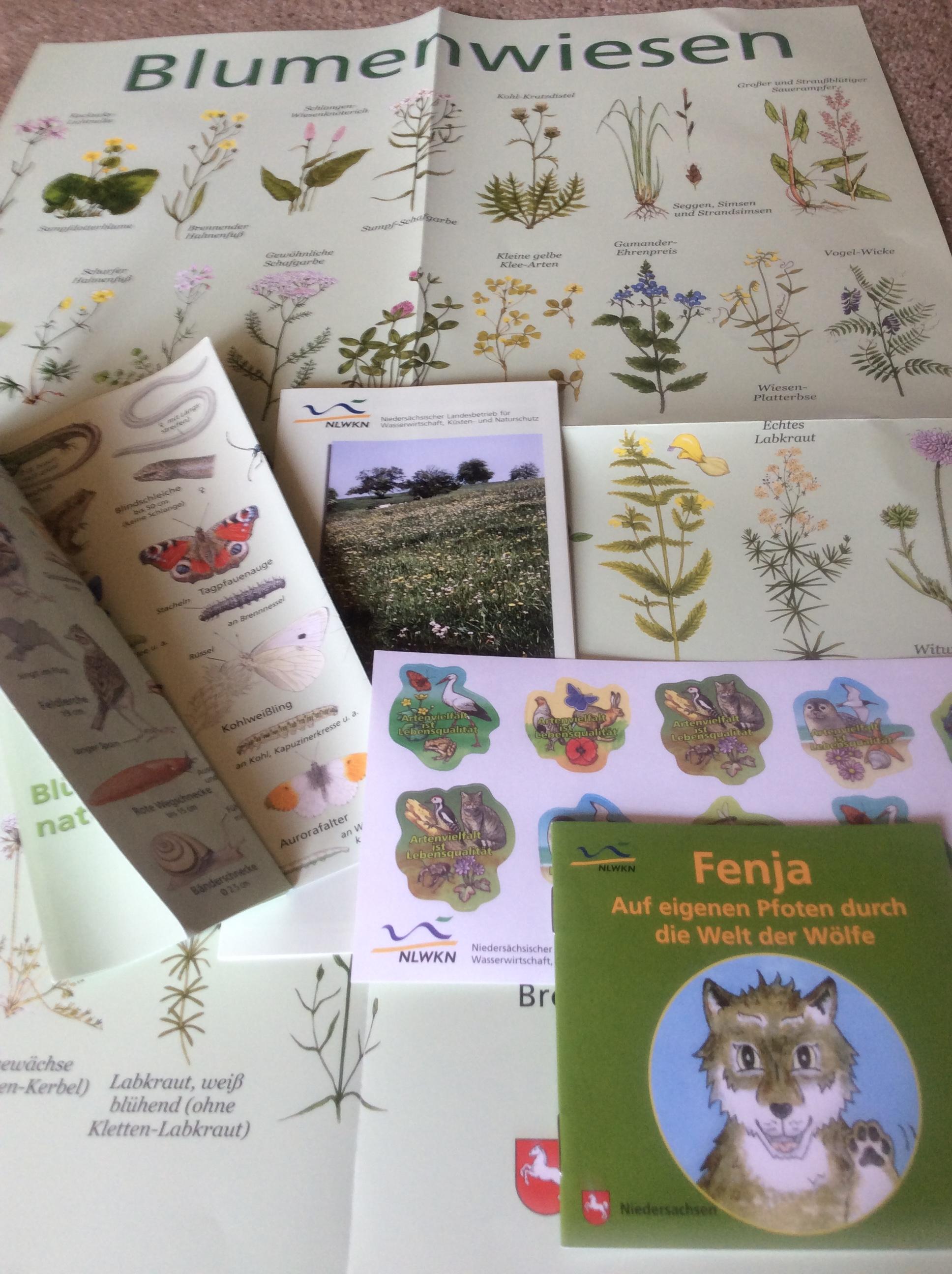 [NLWKN] Blumenwiesenposter, Tier- & Pflanzenbroschüren, Sticker, Kinderbüchlein (gratis)
