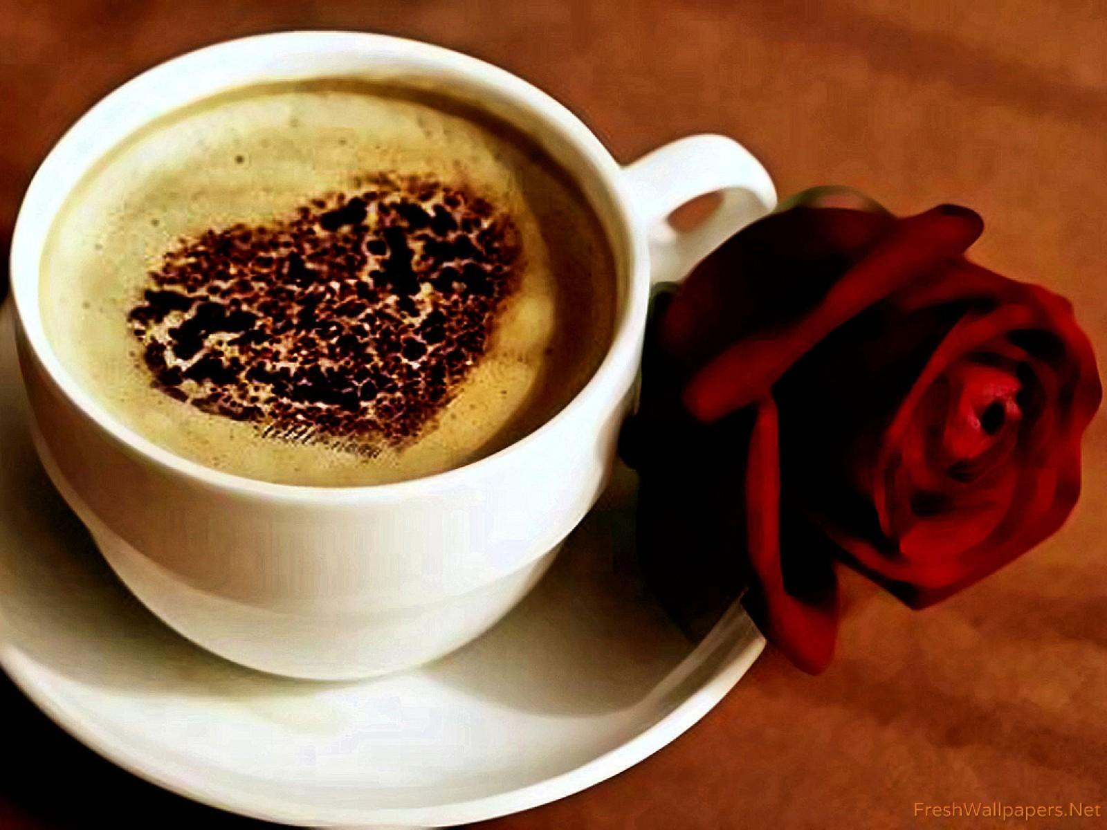40% Rabatt bei CafeRoyal! Code Anfrage nur bis 30.05 18.00 Uhr!