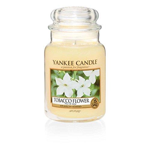 [Amazon] Yankee Candle Tobacco Flower 623g (groß) für nur 14,99€ Prime