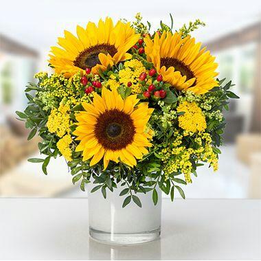Lidl Blumen 20% Rabatt auf alle Blumen durch Fehler