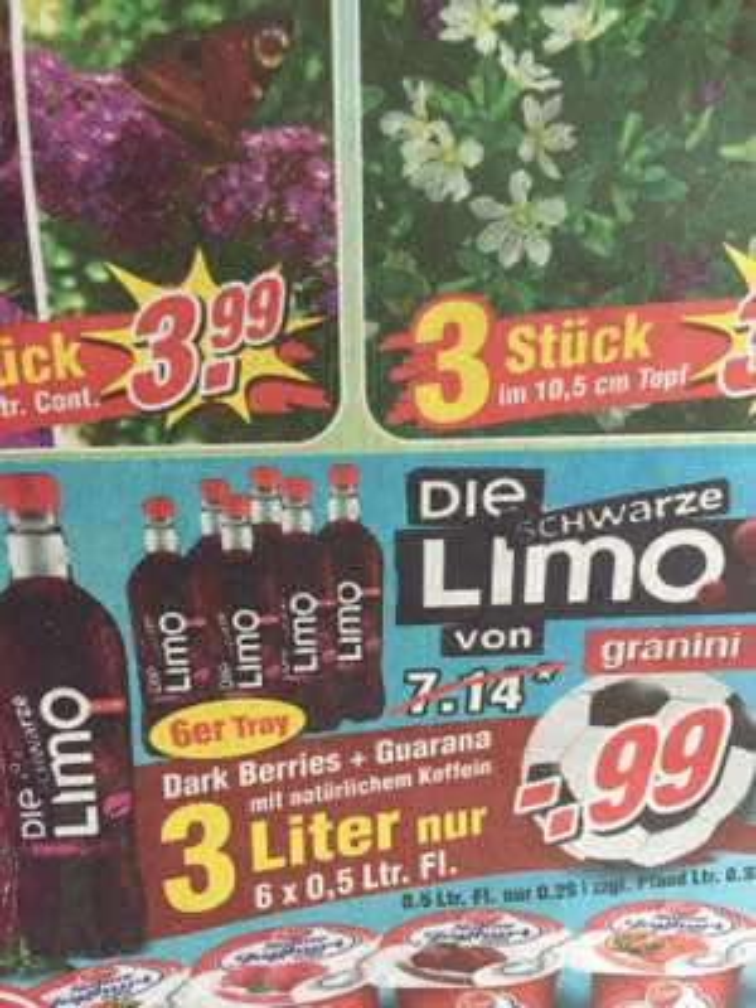 [Wiglo] Die schwarze Limo 6x 0,5 Liter 0,99€ + 1,50€ Pfand