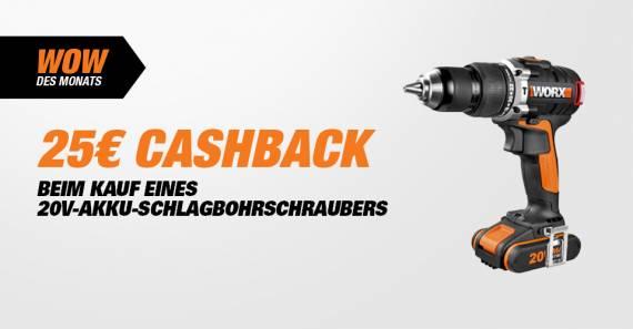 25 Euro Chashback auf 20 V Worx Schlagbohrschrauber