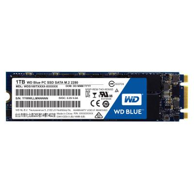 WD Blue 1 TB M.2 SATA 6 Gbit/s interne SSD