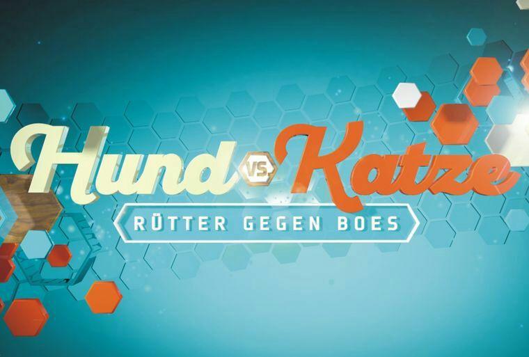 Köln : HUND VS. KATZE - Neue RTL-Show Kostenlose Resttickets - Juli 2018