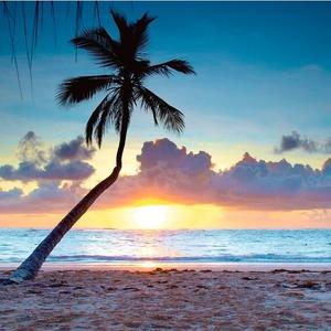 Flüge: Dom. Republik [Juni] - Super Super Last-Minute - Hin- und Rückflug von Frankfurt nach Punta Cana ab nur 256€ inkl. Gepäck