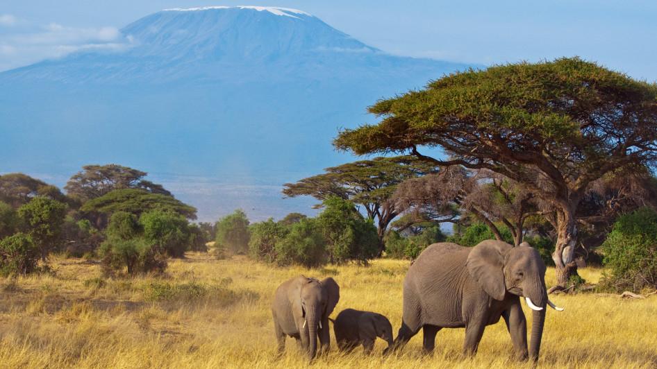 Kenia [November - Februar] Hin- und Rückflug von Brüssel nach Mombasa mit TUI fly ab 330 €