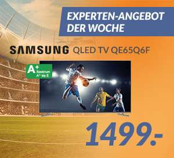 [Lokal Expert Pfaffenhofen/Schrobenhausen] Samsung Fernseher QE65Q6FGMTXZG für 1499 €