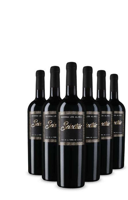 """6 Flaschen prämierter spanischer Rotwein (94 Parker Punkte) Finca los Aljibes """"Selectus"""" 2007 [Vicampo Neukunden]"""