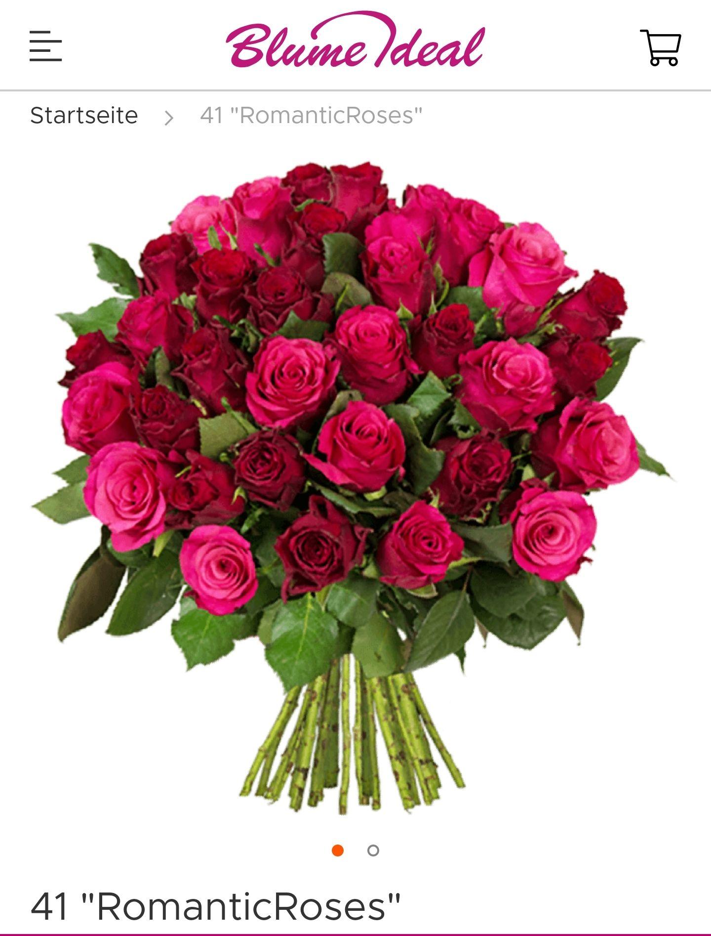[Blume Ideal] 41 Rosen mit 50cm Länge für 22.98 inkl. Versand