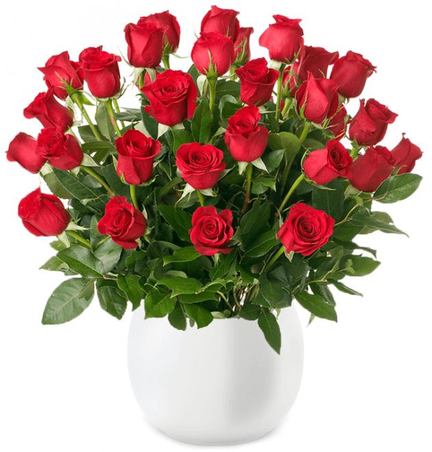 """53 rote Rosen """"ClassicRed"""" für 19,99€"""