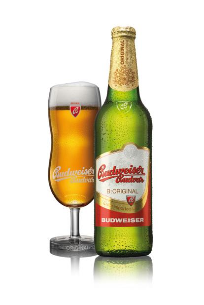 [real,-Landshut] Budweiser Budvar 20 x 0.5 l