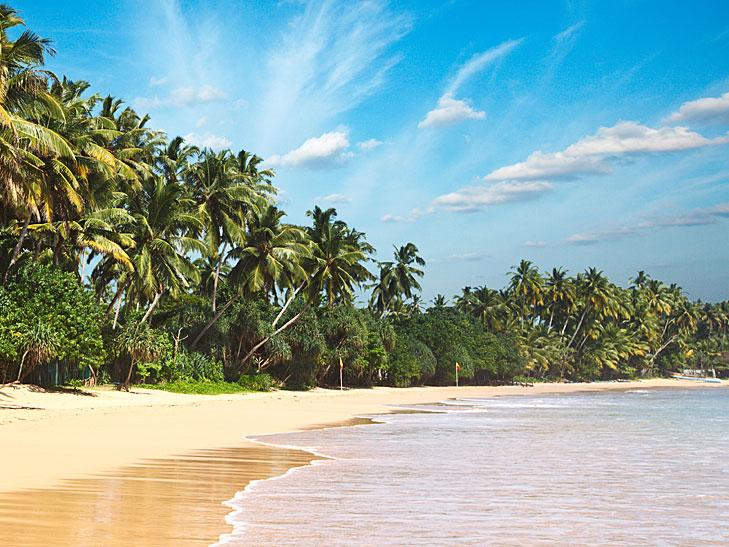 Business Class Flüge Sri Lanka [September - Dezember] Hin- und Rückflug mit Saudia von Mailand nach Colombo ab 746 € inkl. 2 x 32 KG Gepäck