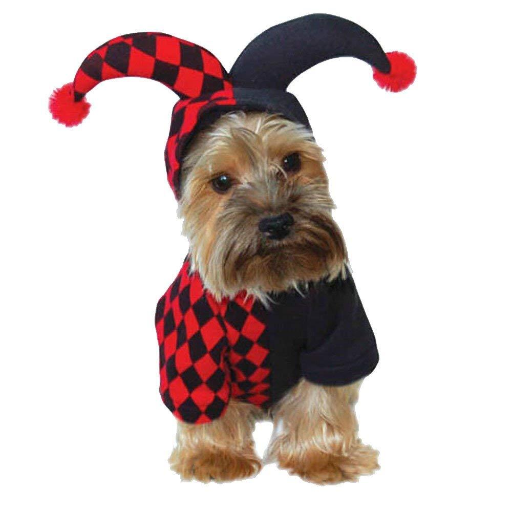 [WHD + Prime] Animally Hunde Harlekin Kostüm, Größe S (Neu: 22,70 €)