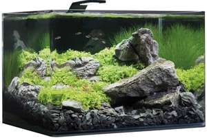 Dennerle Scapers Tank Basic Nano Aquarium Komplettset mit Panoramascheibe 55 l