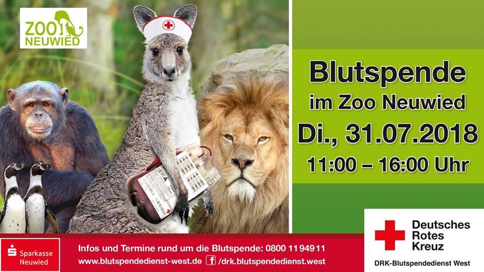 Zoo Neuwied - Gratis Eintritt am 31.7. wenn man Blut spendet