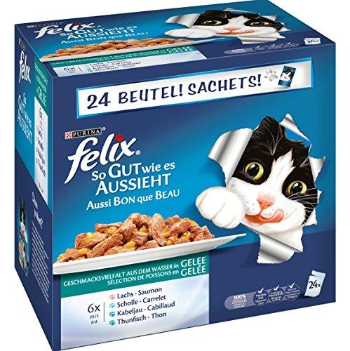Katzenfutter Sammeldeal zum Weltkatzentag [Amazon]