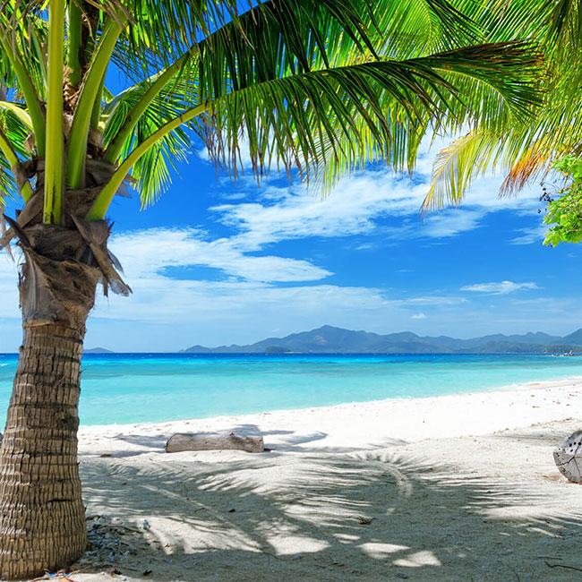 Flüge: Jamaika [August] - Last-Minute - Hin- und Rückflug von München nach Montego Bay ab nur 355€ inkl. Gepäck
