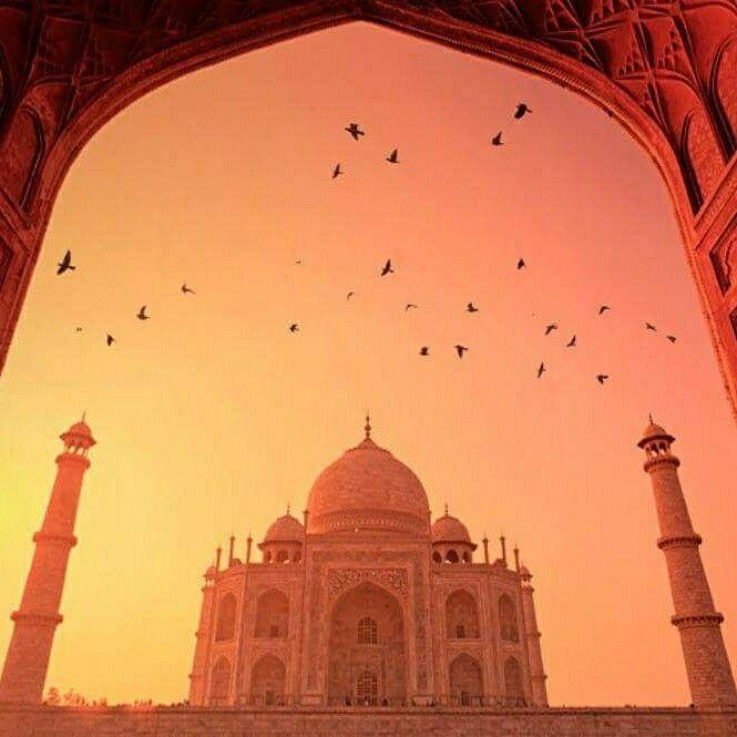 Flüge: Indien [Oktober - November] - Hin- und Rückflug mit Etihad Airways und Air Serbia von Frankfurt nach Neu Delhi ab nur 345€ inkl. Gepäck