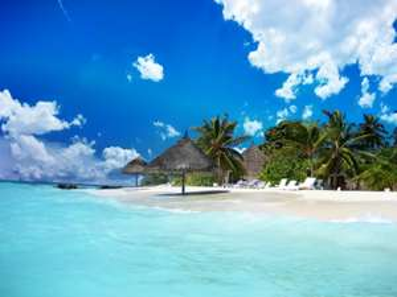Günstige Flüge von Deutschland nach Martinique oder Guadeloupe ab nur 376 €