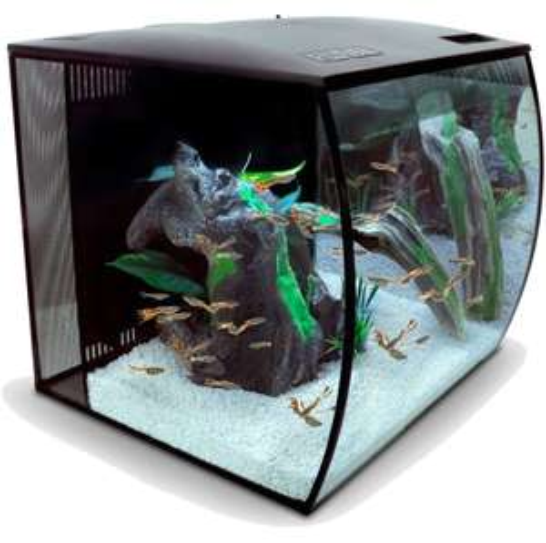 Nano Aquarium Komplettset FLUVAL Flex 57 l mit mehrfarbiger LED-Beleuchtung, Filter, Pumpe, schwarz [Rinderohr Tierbedarf]