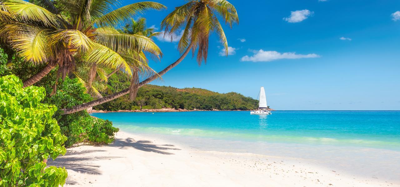 Flüge nach Curacao, Jamaika, Aruba ab 299€ Hin und Rückflug (Direktflug) von Brüssel (Sep - Okt)