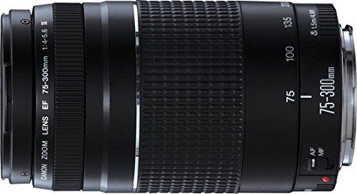 Canon EF 75-300mm/ 4,0-5,6/ III Objektiv 103,46 € (Amazon.it)