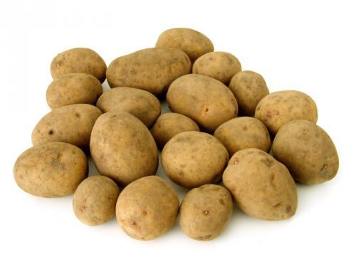 10kg Kartoffeln 1,99€ REWE