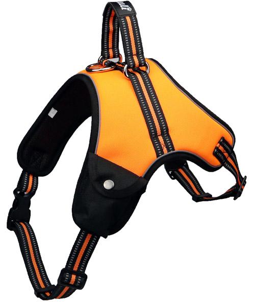 BALULI Hundegeschirr S-XXL (verschiedene Farben) + Hundeleine 200cm