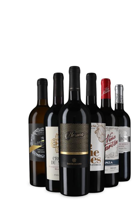 6 Flaschen Rotwein als Kennenlernpaket aus Italien, Frankreich und Spanien [Vicampo Neukunden]