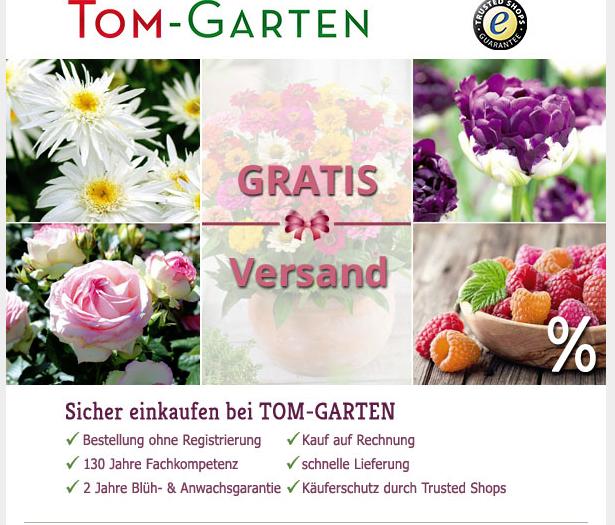 [Tom-Garten] kostenloser Versand ohne Mbw bis 3.10(innerhalb Deutschlands)