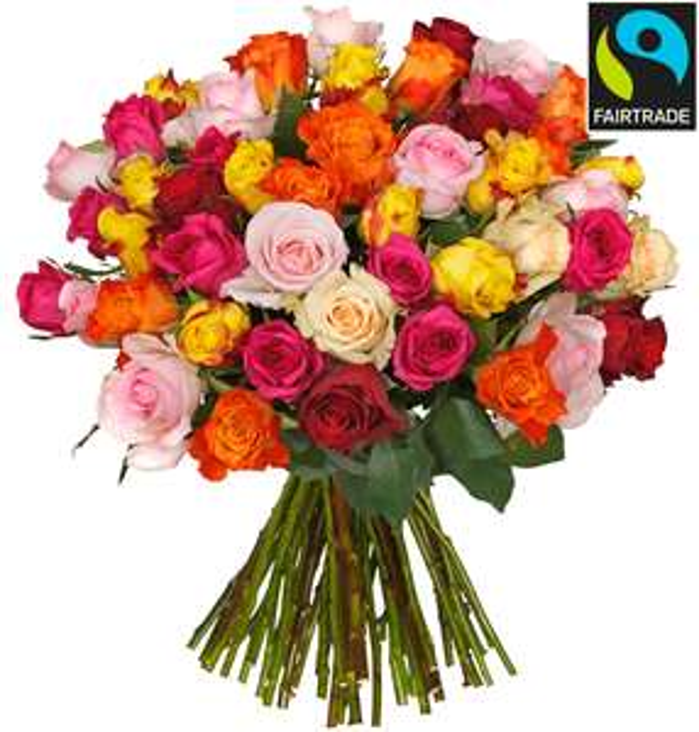 44 bunte Rosen mit Fairtrade Siegel