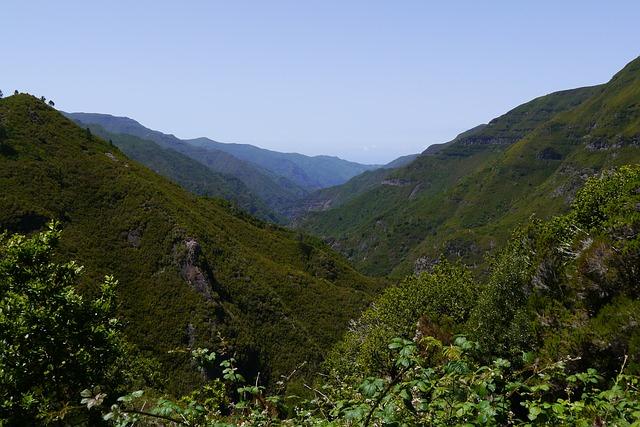 (weg.de) Madeira Alleinreisende 1 Woche mit Frühstück Residencial Vila Lusitania November und Dezember