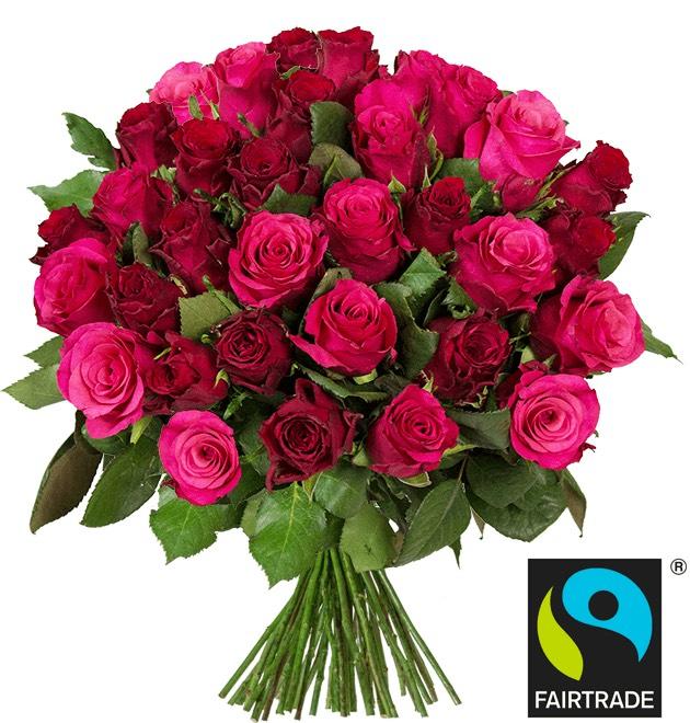 """39 rote Rosen """"RomanticRoses"""" (Fairtrade)"""