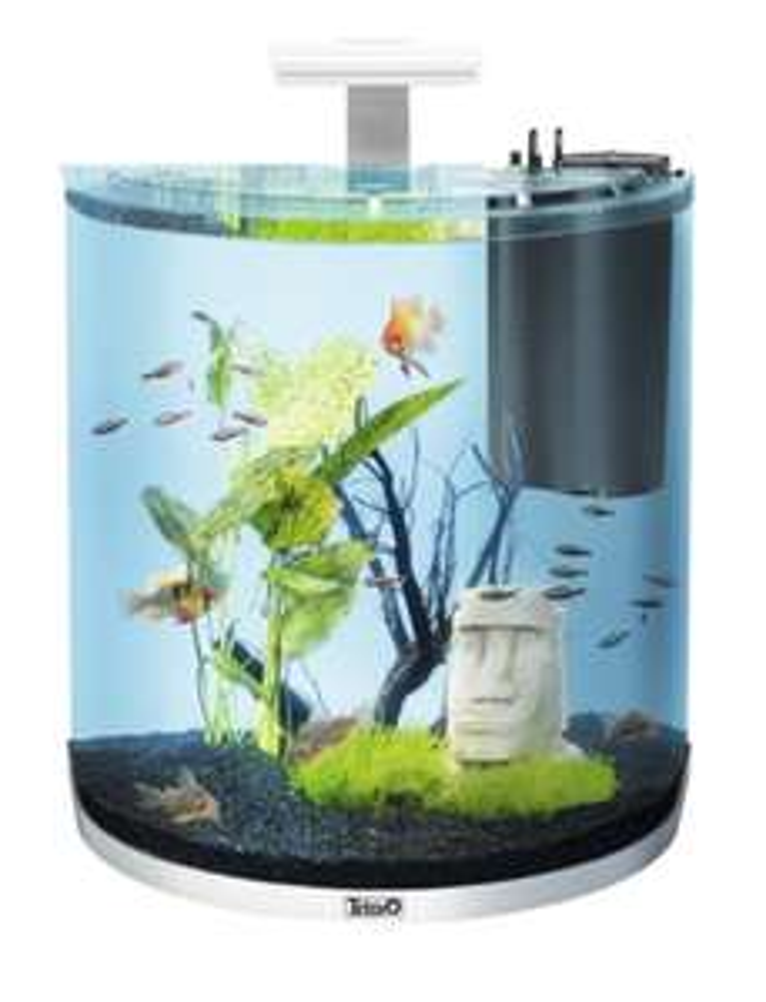 Tetra AquaArt Explorer Line Aquarium Komplett-Set 60 Liter weiß, (gewölbt, mit LED) oder Discovery Line Komplettset für 82,49€ statt 104,99€