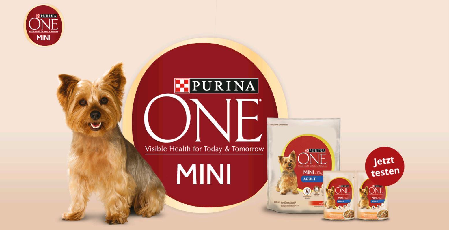 3€ Rabatt auf Purina Beyond Hundefutter bei Real, Globus und Das Futterhaus und Purina Mini Adult gratis testen!