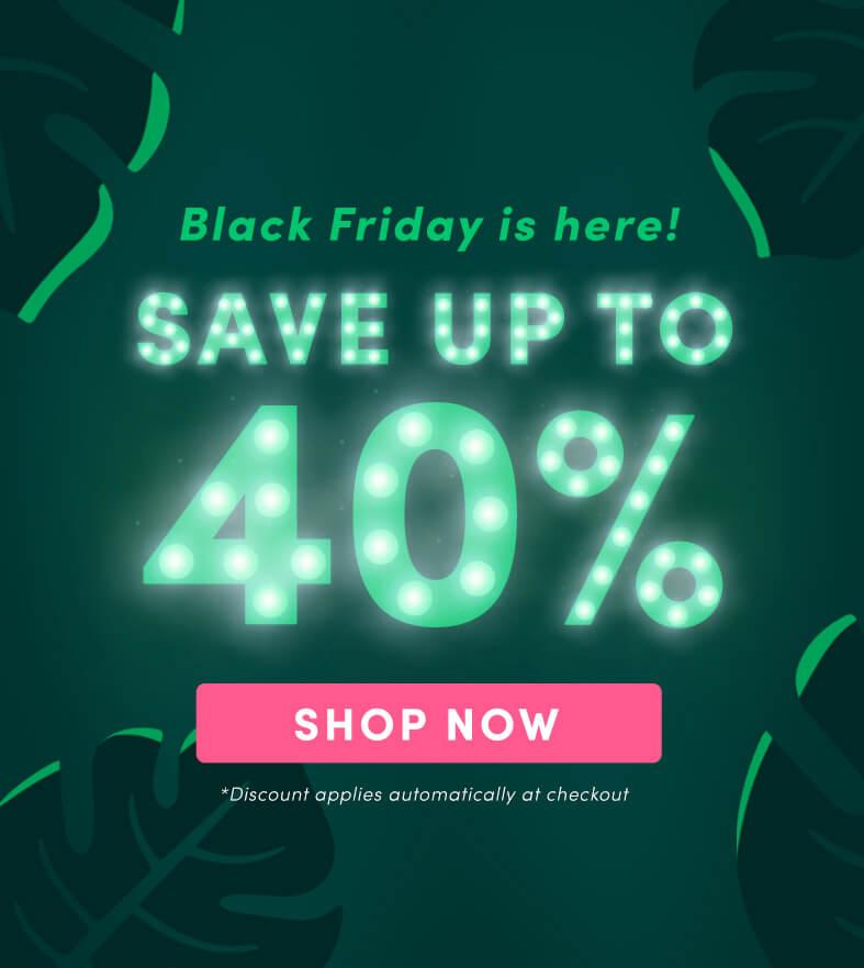 Coco & Eve: Haarpflege bis zu 40% günstiger