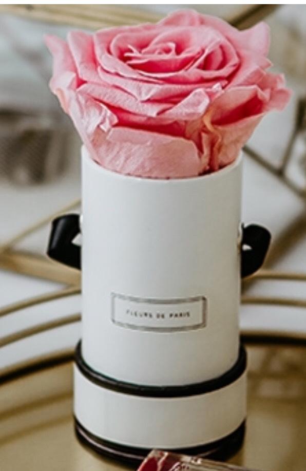 3-Monatsabo Glamour plus Infinity Rose von Fleurs de Paris